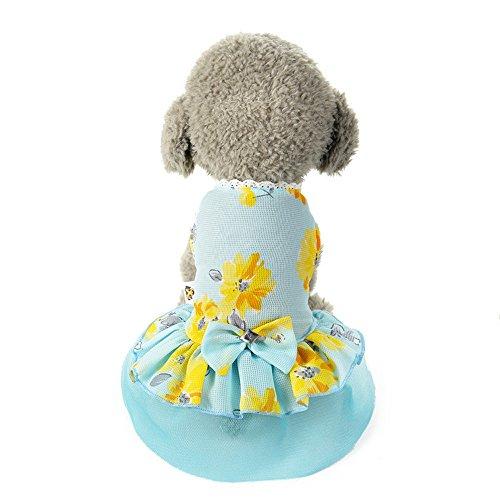 ♥ Loveso ♥ -Huastier Hunde 2017 Sommer Hund Katze Bogen Tutu Kleid Spitze Rock Haustier Welpen Hund Prinzessin Kostüm Kleidung Kleidung (M, Blau) (Mops Kostüme 2017)