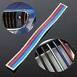 Grille Vinilo Strip PVC de la etiqueta engomada para BMW M3 M5 E36 E46