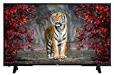 JVC F43 Serie LT-49VF43A 124 cm (49 Zoll) Fernseher (Full HD, Triple Tuner, LED)