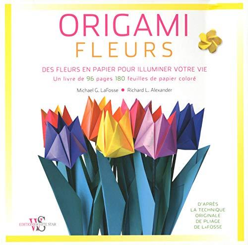 Origami - Fleurs par Michael g La fosse