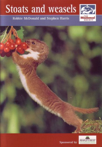 Stoats and Weasels (Mammal Society Species Series)