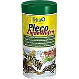 Tetra Pleco Algae Wafers Hauptfutter (mit Spirulina-Algen für algenweidende Bodenfische), 250ml Dose