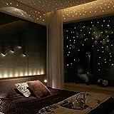 Sternenhimmel 407 fluoreszierende Leuchtpunkte / selbstklebend / Wandsticker mit langer Leuchtkraft/ ideal für Kinderzimmer und Schlafzimmer! LuckyGirls