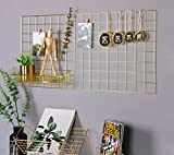 Nugoo Grid Panel Foto Wall Multifunktions Draht Mesh Display Panel Dekorative Eisen Rack Clip Foto Wand aufhängen Bild Wand Fashion Art Display & Organizer Gold, 17.7 x 37.4