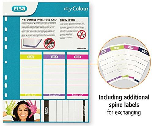 ELBA 100023638 Ordner myColour 10er Pack Kunststoffbezug außen und innen 8 cm breit DIN A4 zweifarbig weiß sortiert, weiß/violett, weiß/pink und weiß/hellgrün - 6