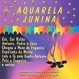 Pot-Pourri de Quadrulhas: Quadrilha Brasileira / Quadrila do Zé Moringa / Quadrilha do Bacurau / Quadrilha do Zé Pipa / Fim de Festa / Quadrilha Brasileira