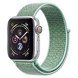 ANBEY für Apple Watch Armband 38mm 40mm 42mm 44mm, Geeignet für iWatch Apple Watch Serie 4, Serie 3, Serie 2, Serie 1, Nylon Sportschlaufenband Ersatzarmband Turquoise Green 38/40mm
