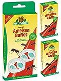 2 Neudorff Loxiran AmeisenBuffet Dosen + 2 x 40 ml Köder-Nachfüller