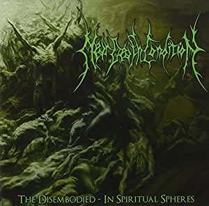 The disembodied-in spiritual spheres