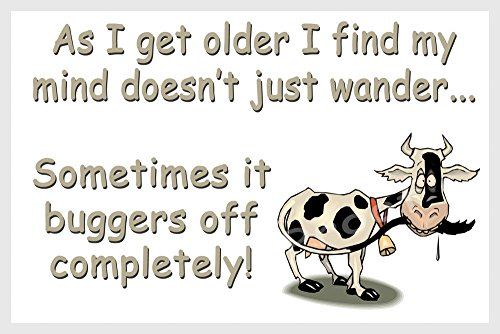cow-funny-fridge-magnet-gift-as-i-get-older