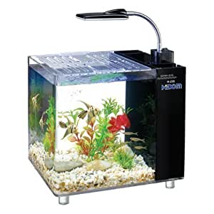 Hidom mini desktop aquarium fish tank 15 litre with filter for Amazon fish tank filter