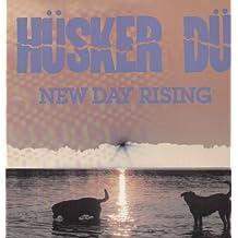 New Day Rising [Vinilo]