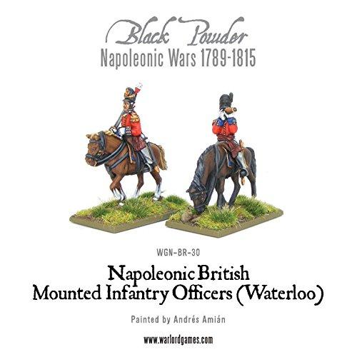 Waterloo Britische berittene Infanterie-Offiziere