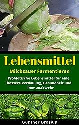Lebensmittel Milchsauer Fermentieren-Probiotische Lebensmittel für eine bessere Verdauuung, Gesundheit und Immunabwehr