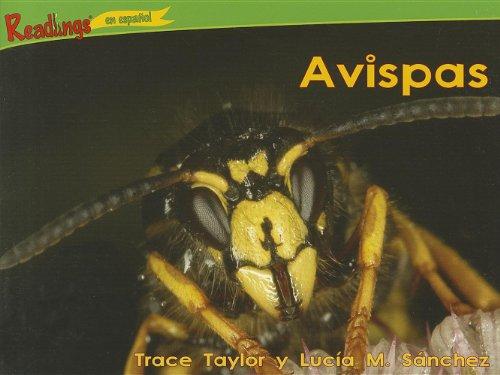 Avispas (El Poder De 100 - Bichos / Power 100 - Bugs)