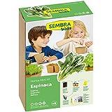 SEMBRA Mini kit - Espinaca, 17 x 9.5 x 25.5 cm