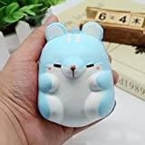 Stress Reliever Toys, Yukong Super Slow Rising Cute Hamster Squishy Squeeze Healing Fun Kawaii Cream Scented Decompression ToysToy (Blue)