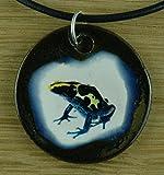 Echtes Kunsthandwerk: Hübscher Keramik Anhänger mit einem Frosch; Baumsteigerfrösche, Dendrobatidae, Pfeilgiftfrösche, Farbfrösche, giftig