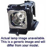 Acer EC.JDW00.001 190W UHP projector lamp - projector lamps (UHP, 190 W, 4500 h, S1210) prezzi su tvhomecinemaprezzi.eu