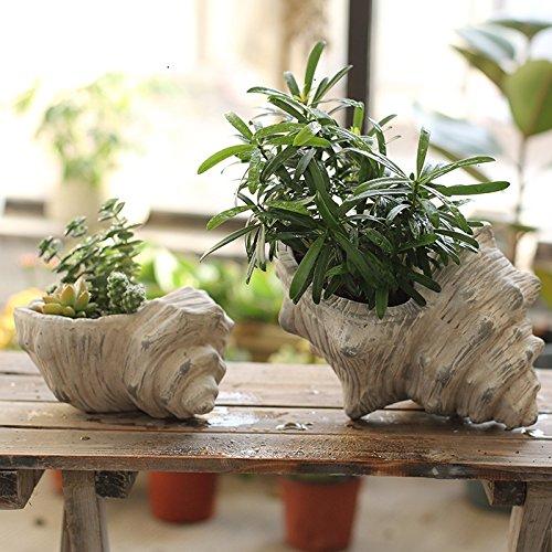 poignee-de-ponceaux-en-ceramique-pots-la-conque-de-leau-fleurs-hilling-vieille-et-antique-decoration