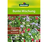 Dehner Saatgut, Gründüngung, Bunte Mischung, 500 g, für ca. 100 qm