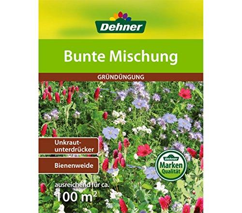 (Dehner Saatgut, Gründüngung, Bunte Mischung, 500 g, für ca. 100 qm)