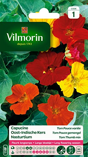 Vilmorin 3211500010247 5186841 Capucine Tom Pouce variee naine, Multicolore, 90 x 2 x 160 cm