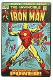 Newcave Hot Star Hero Chic Home Bar Vintage Metallschilder Home Decor Vintage Blech Schilder Pub Vintage Deko Blech Wandkunst 20x30 cm - Iron Man