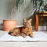 Kuschelig Begleiter Winter Wärmer selbst Heizung/Thermo Haustierbett 64x 49cm Katzen/Hunde