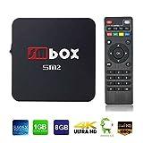 SMBOX SM2 Smart Android 6.0 4K 1080P TV Box Amlogic S905X Quad-Core 1G+8G 2.4GHz WIFI HDMI