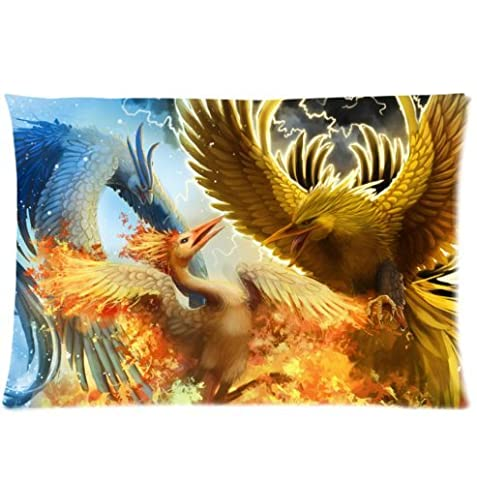 Custom It bird the phoenix fire cold snow lightning a battle in the sky Rectangular Decorative Cotton polyester Pillow Case Cushion Cover 20x30 Inch(one side)