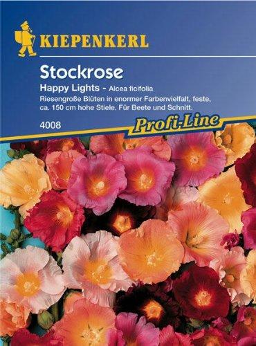 Malve-pflanze (Alcea ficifolia Stockrosen Happy Lights Mischung)