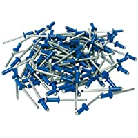 Cora 000116015 Kit de 100remaches de fijación para matrícula, azul