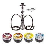 Ectxo 55cm Shisha Hookah Wasserpfeife Set (Schwarz) mit 2 Schläuchen und 4 X 100gr Shiazo Dampfsteine Steam Stones