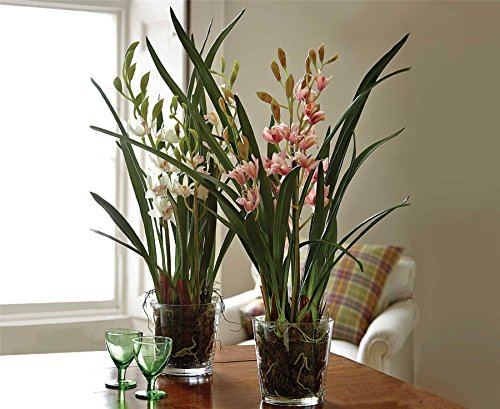 Bloom Large Coral Cymbidium Orchid Potted Glass Planter Artificial Silk Flower