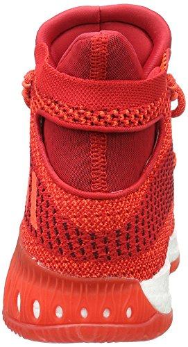 adidas Herren Crazy Explosive Basketballschuhe Rosso (Redsld/Scarle/Solred)