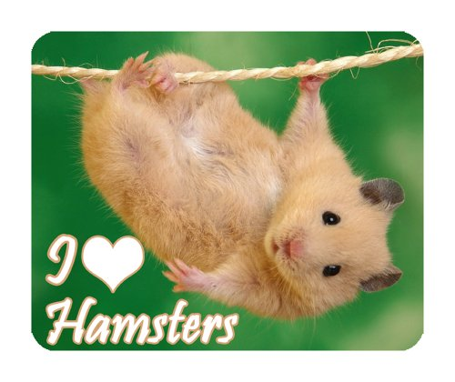 hamster-mouse-mat-wildlife-i-love-hamsters