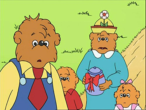 the-berenstain-bears-new-neighbours