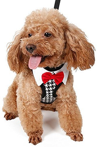 Haustier Hund Katze elegant Hahnentritt Kragen Halsbinde Smoking Geschirr + Leine Hochzeit Kostüm Kleid Kostüm Outfit Set - Medium (Hahnentritt-kragen)