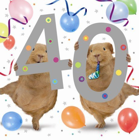 Guinea Pigs Partying 40th Birthday Card