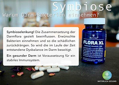 FLORA XL Bakterien zur Ansiedlung im Darm, Ballaststoffe, Enzyme für Verdauung I 3 in 1: Symbioselenkung, Candida-Diät, Darmkur I Antibiotika, Adipositas, Metabolisches Syndrom.