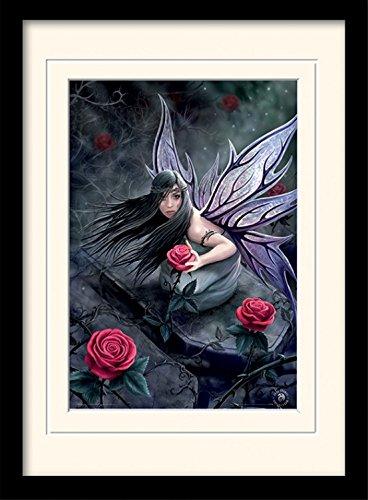 - Rose Fairy, Anne Stokes Gerahmtes Poster Für Fans Und Sammler 40 x 30 cm ()
