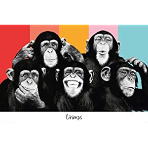 Empireposter - The Chimp - Compilation - Größe (cm), ca. 91,5x61 - Poster