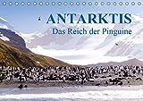 Antarktis - Das Reich der Pinguine (Tischkalender 2019 DIN A5 quer) - Max Steinwald