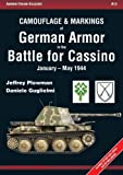 Camouflage & Markings of German Armor in the Battle for Cassino - January-May 1944 (Armor Color Gallery)