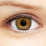 Linsenfinder Farbige Kontaktlinsen Braun '3Tones Hazel Brown' + Behälter für HELLE Augen ohne und mit Stärke braune Kontaktlinsen farbig