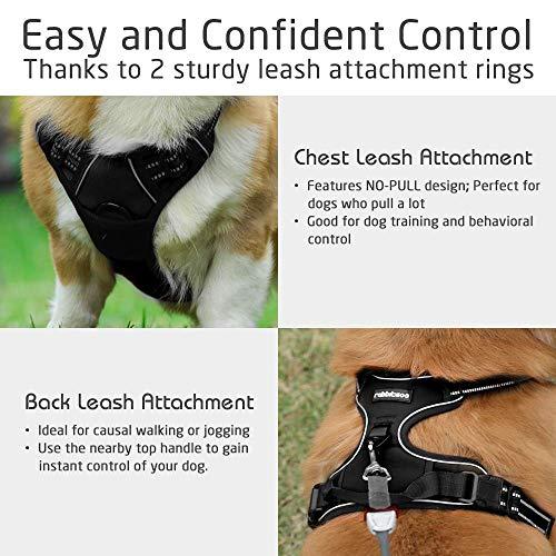 Rabbitgoo No-Pull-Hundegeschirr einstellbar weich Hundegeschirr Haustier einfach sicher Kontrolle Körper bequem Hunde Leine für kleine Hunde schwarz 3 Größe - 5