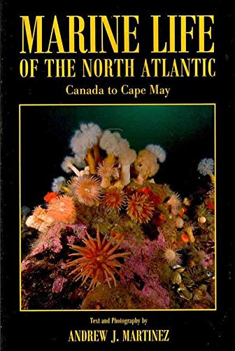 [(Marine Life of the North Atlantic : Canada to Cape May)] [By (author) Andrew J Martinez ] published on (February, 2011)