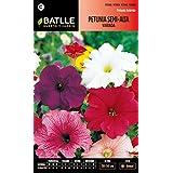 Semillas Batlle 096006BOLS - Petunia Semi alta variada