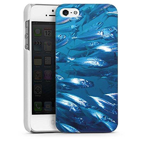 Apple iPhone 6 Housse Étui Silicone Coque Protection Poisson Poissons Banc de poissons CasDur blanc